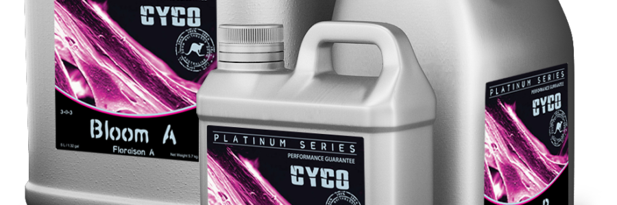 Cyco Platinum Bloom