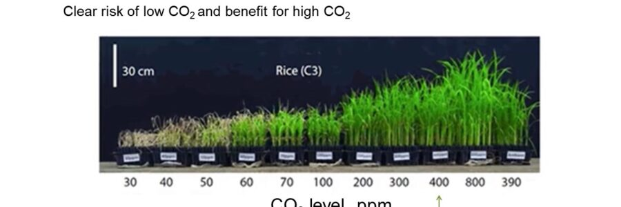 Tips – CO2